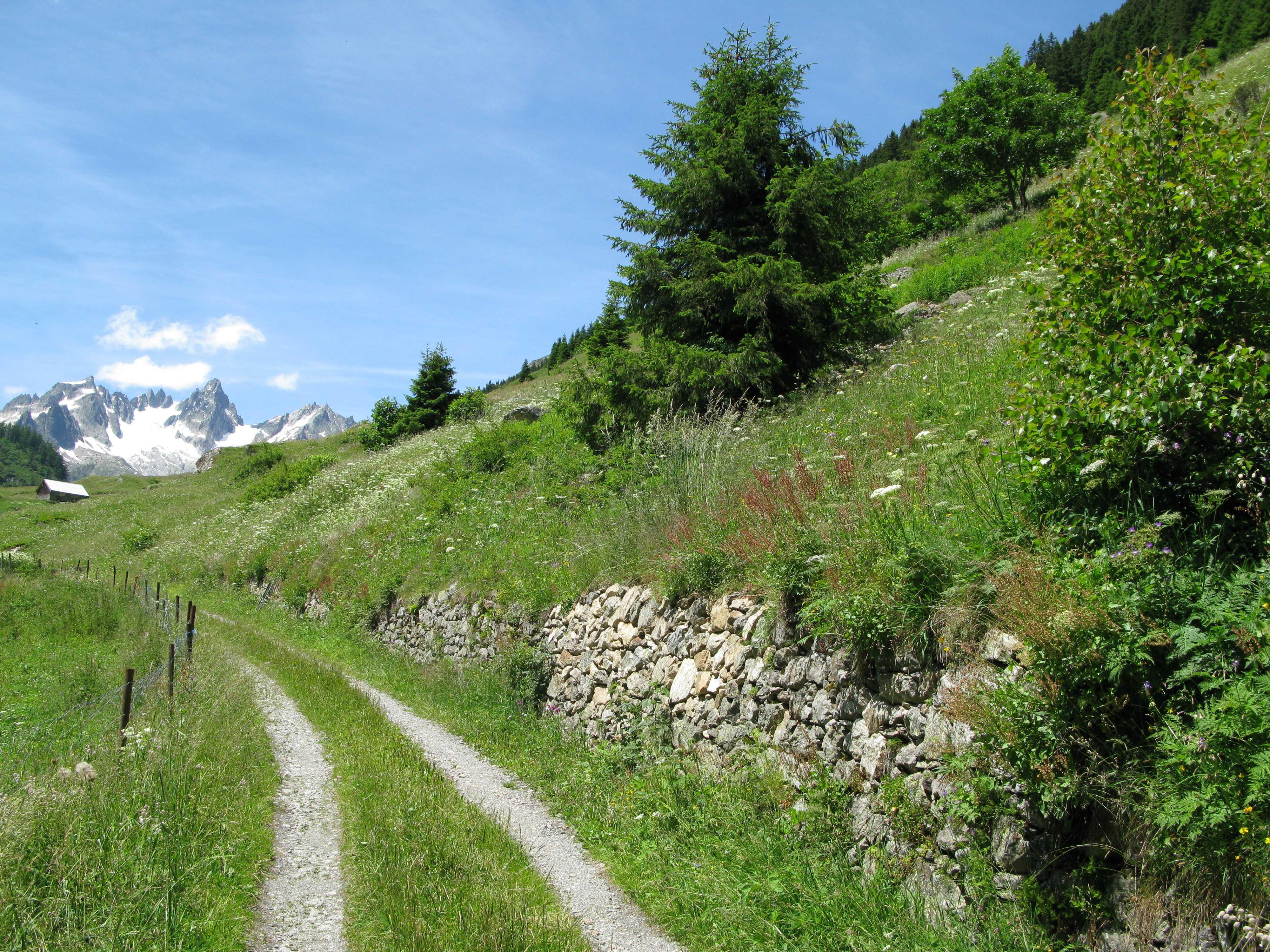 Biotopaufwertung und Landschaftsentwicklung Meiental