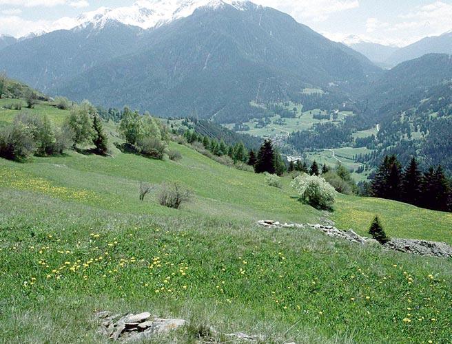 Bewirtschaftungs Verträge Kanton Graubünden (seit 2006)