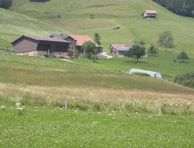 Naturschutz Verträge und Weidekonzepte LU (seit 1998)