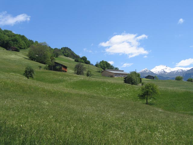 Natur und Landschaft in Gesamtmeliorationen (seit 2007)