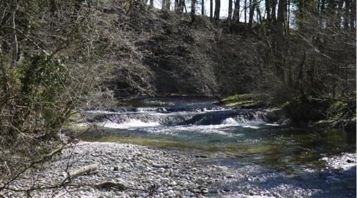 Suppression d'un seuil sur la rivière du Veyron.