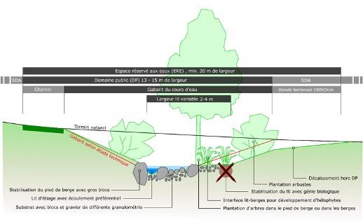 Etude de faisabilité pour la revitalisation du ruisseau de la Saubrette