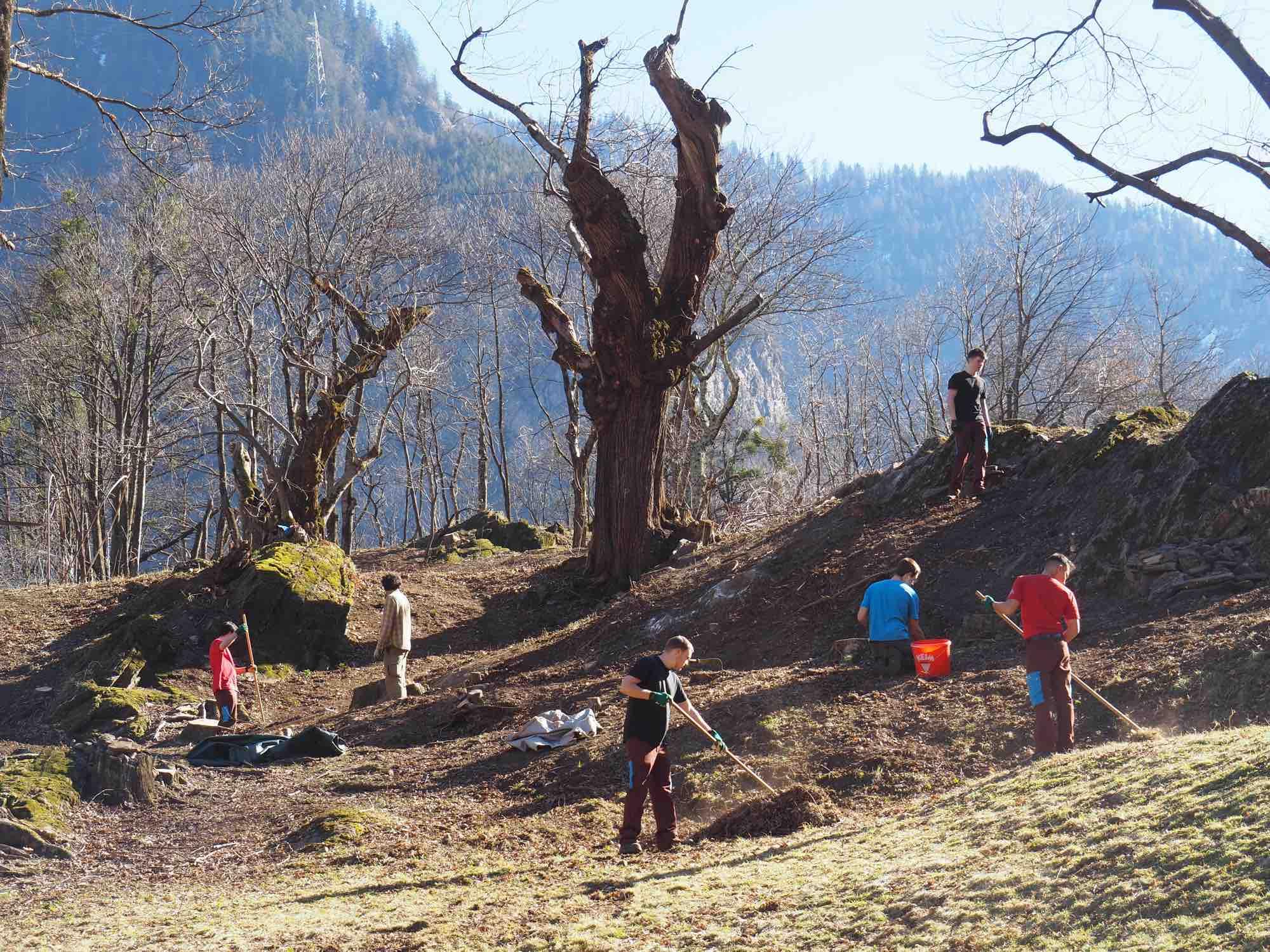 Die Zivi Biotoppflege-Saison 2021 ist eröffnet