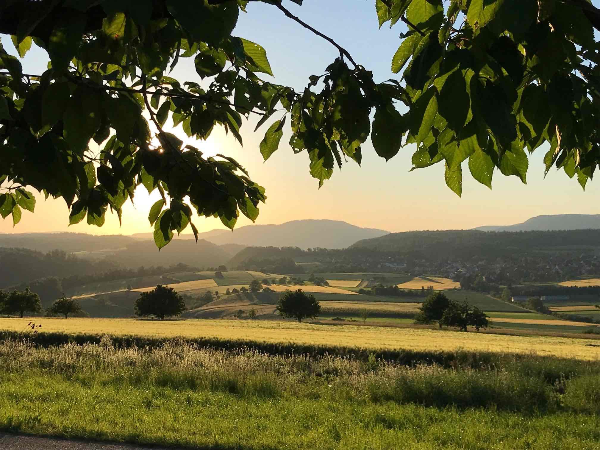 Regula Waldner ist Landschaftsberaterin BAFU